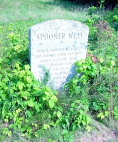 spoonerwell2a