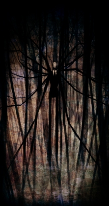 The_Slender_Man_by_Pirate_Cashoo
